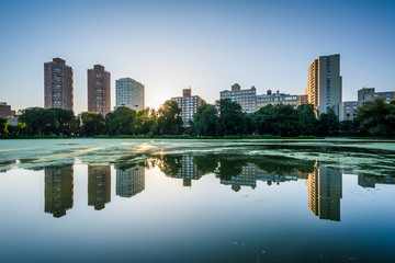 Sunrise over buildings and the Harlem Meer, in Manhattan, New Yo