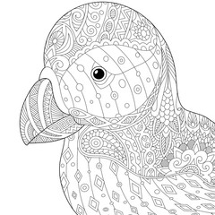 Stylized puffin (atlantic sea bird) isolated on white background.