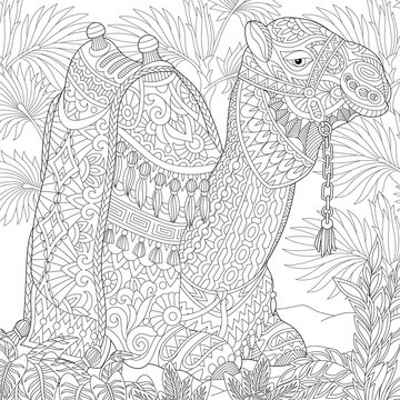 Stylized camel sitting among palm trees in desert oasis. Freehand sketch for adult anti stress coloring book page with doodle and zentangle elements.