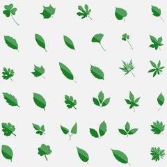 Green set of 35 leavs icons isolated on background. Modern flat
