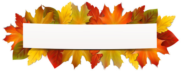 slightly bent card with autumn leaves