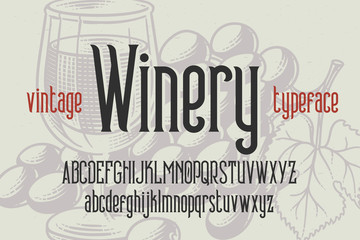 """Classic typeface named """"Vintage Winery"""". Condensed font on light engraved background."""