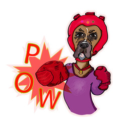 Dog boxer does blow. Vector