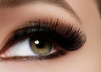 Beautiful macro shot of female eye with extreme long eyelashes and black liner makeup. Perfect shape make-up and long lashes. Cosmetics and make-up. Closeup macro shot of fashion eyes visage