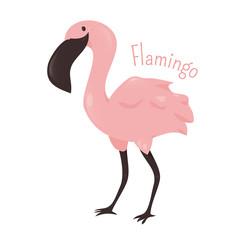 Flamingo isolated. Child fun pattern icon.