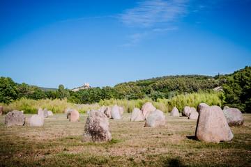 Le Jardin des 9 Damoiselles et la Bambouseraie de Vaison-la-Romaine