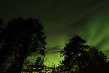 Aurora Boreal en Finlandia
