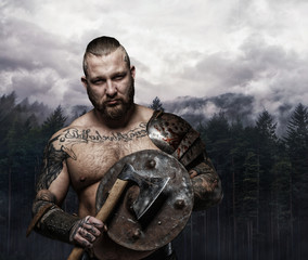 Viking holding wooden shield and axe.