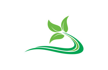 eco leaf organic logo