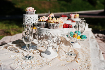 Picnic table with decor on grass with macaroon, strawberry and c