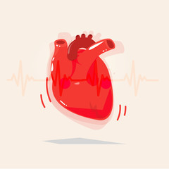 Human heart with beat - vector