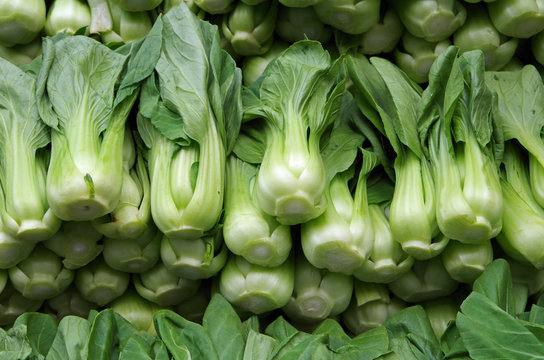 Bok choy neatly stacked for market