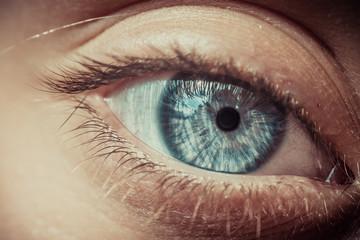 Macro, Blue eyes