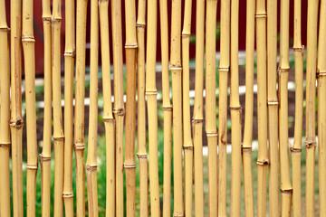 yellow bamboo fence