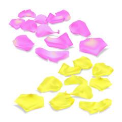 Vector rose petals