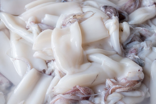 Fresh squid on tray in market