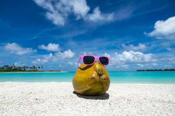 coconut funny wearing sunglasses on the beach