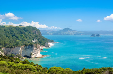 Cathedral Cove in Coromandel Peninsula on the North Island of New Zealand