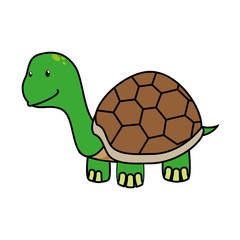 Tortoise cute pet graphic design, vector illustration isolated icon.