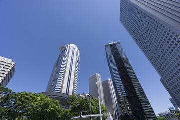 春 新緑 青空 新宿高層ビル街 見上げる 超広角 コピースペース