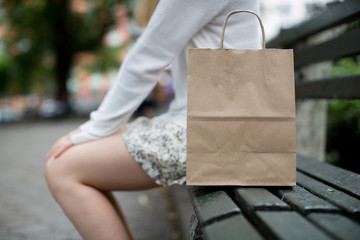 Brown blank paper bag on the bench