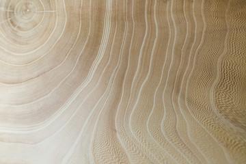 wood background. wood background. wood texture. wood texture. elm
