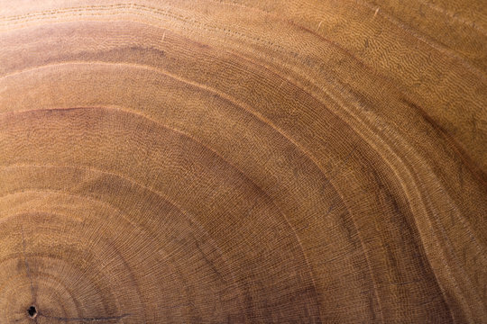 wood background. wood background. wood texture. wood texture. apricot