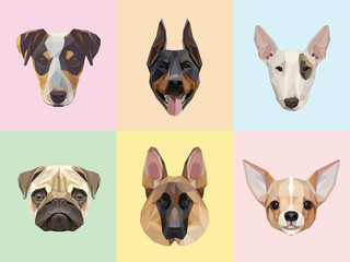 Dog breeds portraits vector illustrations in geometric style