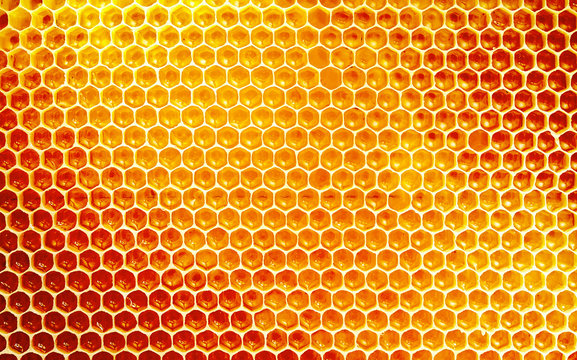 Background texture and pattern of honeycomb