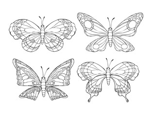 Collection of pretty cartoon butterflies isolated on white background.