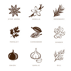 Spices, Condiments and Herbs