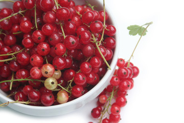 ciotola di ribes. frutti rossi isolati su sfondo bianco