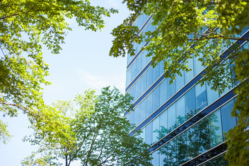 Modern glass facade high-rise office building in an environmentally friendly city district with lush green trees Wall mural