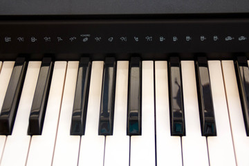 Piano Keys, part of digital midi keyboard, close up.  roll. Synth  for learning to play the . Musical . the concept  classical music black and white