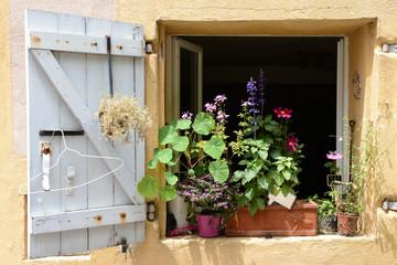 Malerisches Fenster mit Blumen