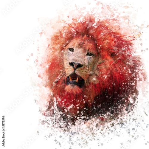 Lion Head watercolor