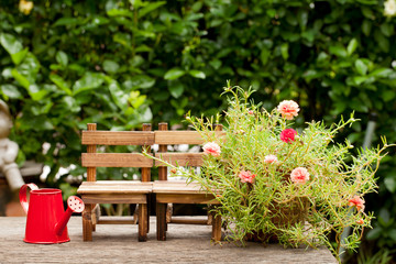 Wooden chairs and red watering can. Small flower garden, Concept