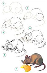 Page shows how to learn step by step to draw a rat. Developing children skills for drawing and coloring. Vector image.