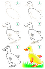 Page shows how to learn step by step to draw little duck. Developing children skills for drawing and coloring. Vector image.