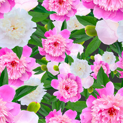 seamless floral pattern with pink peonies. Vector.