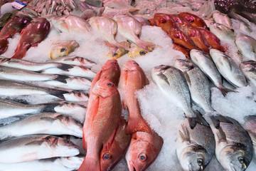 frischer Fisch beim Fischhändler