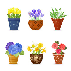 collection of cute flowers planted in art floral pots for your d