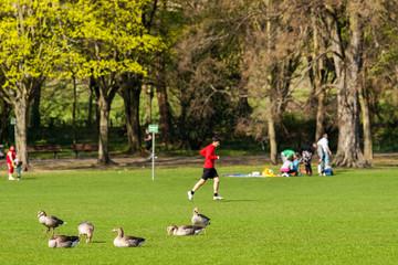 Freizeit im Stadtpark