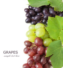Fresh green, red and blue grapes with leaves. Isolated on white