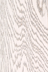 White Painted Oak Wood Texture