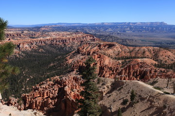 Rainbow point, Bryce canyon NP