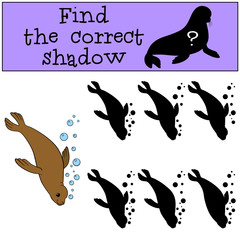 Educational game: Find the correct shadow. Little cute fur seal.