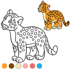 Coloring page with colors. Little cute baby jaguar.