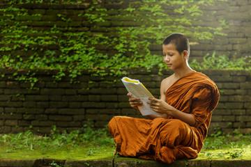 Novice monk learning