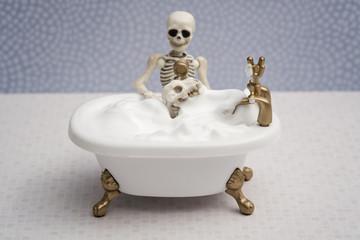 Skeleton giving bubble bath to his dog